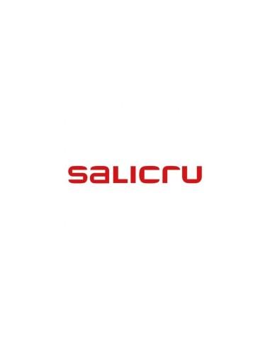 SALICRU BEM SPS ADV RT2 800/1000 7Ah
