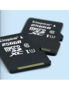 KINGSTON Tarjeta Micro SD HC 32GB Clase 10